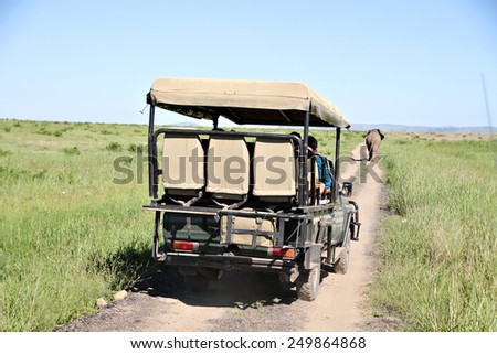 A safari vehicle follows an elephant bull down a dirt road in a South African game reserve. - stock photo