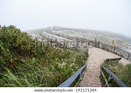 A sandy walkway has been put in place in order to preserve the vegetation keeping dunes in place on Nauset Beach, Cape Cod, Massachusetts. - stock photo