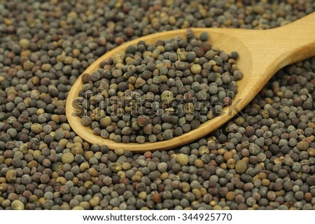 a scattering of rape seeds in a wooden spoon abstract background