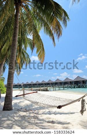 A scene from Kuredu island, Maldives, Lhaviyani atoll, sandy beach, palm trees and hammock - stock photo