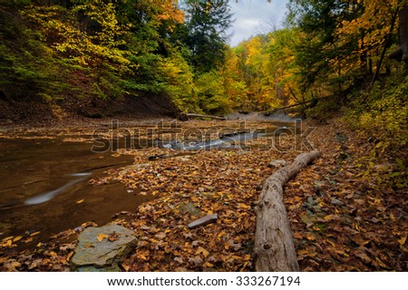 A scenic view along Brandywine Creek in Cuyahoga Valley National Park Ohio.  Seen here in autumn with colorful fallen leaves. - stock photo