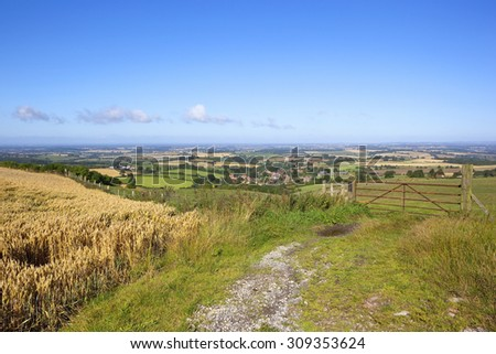 a scenic view from a ripening wheat field overlooking the vale of york with patchwork fields under a blue sky on a summer day - stock photo