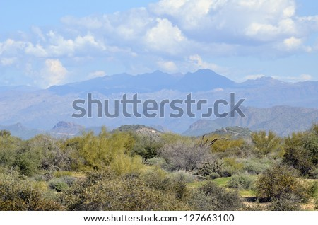 A scenic view of the magnificent desert surrounded by mountain peaks, at McDowell Mountain Regional Park in Arizona, on a sunny morning. - stock photo