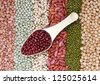 a scoop of red bean against mix of beans and pea for background uses - stock photo