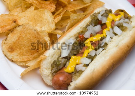 A scrumptious barbecued hotdog with relish, onions, mustard, ketchup and potato chips rests on a picnic table waiting to be consumed. - stock photo