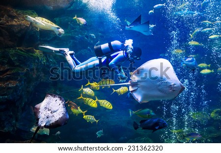 A scuba diver swimming underwater with fishes - stock photo