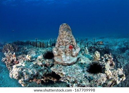A sculpture of god with red egg of nudibranch on coral reef at Oahu, Hawaii. - stock photo