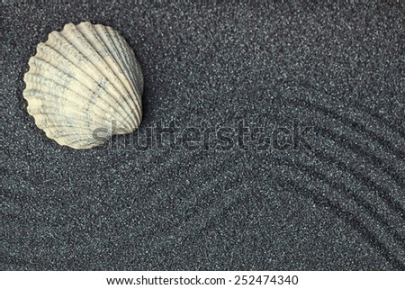 A sea shell in a relaxing zen garden with black  sand