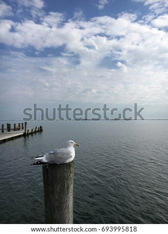 Dock Post Stock Snimky Snimky Pro Cleny Zdarma A Vektory
