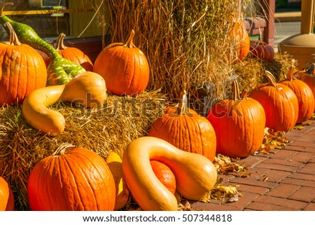 A seasonal display of orange pumpkins arranged to make a colorful autumn decorative outdoor display.