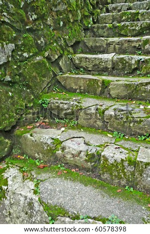 A section of mossy, stone stairs - stock photo