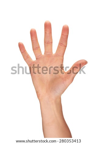 A selection of female hands on a white background.