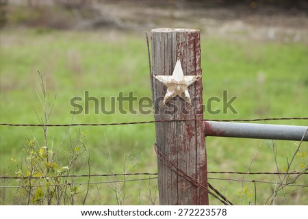 A selective focus view of a grungy white star on a wooden fence post in Texas
