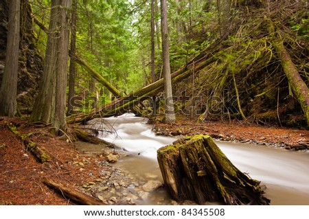A serene mountain stream flows through lush forest    - Margaret Falls in Herald Provincial Park, British Colombia, Canada - stock photo