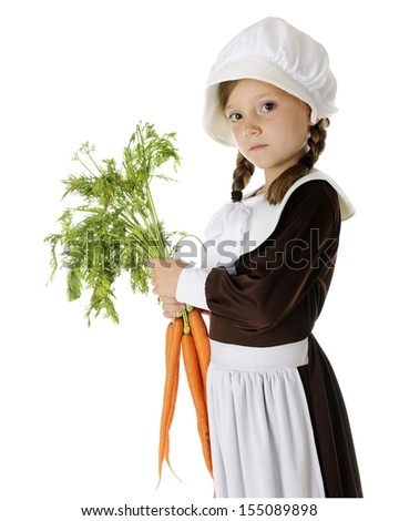 A serious elementary Pilgrim carrying fresh carrots for the first thanksgiving.  On a white background. - stock photo