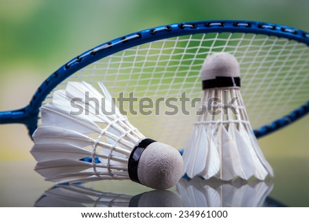 A set of badminton. Paddle and the shuttlecock. Studio shot - stock photo