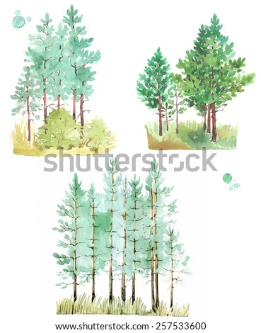 A set of watercolor paintings of young pine-tree forest, isolated on white background.