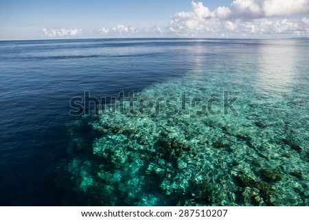 A shallow reef flat in Wakatobi National Park, Indonesia, leads to an impressive vertical drop off. This area, found just south of Sulawesi, harbors some of the Coral Triangle's most healthy reefs.