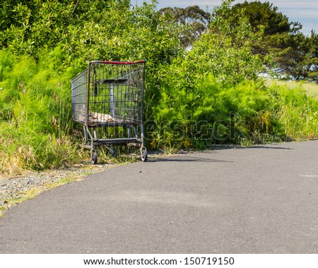 A shopping cart abandoned along a walkway in a park - stock photo