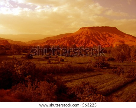 A shot of a desert Oasis in Morocco in sepia (almost) that looks strangely like a colony on Mars - stock photo