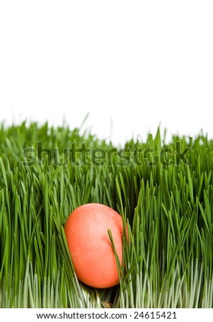 A shot of an easter egg hidden in grass
