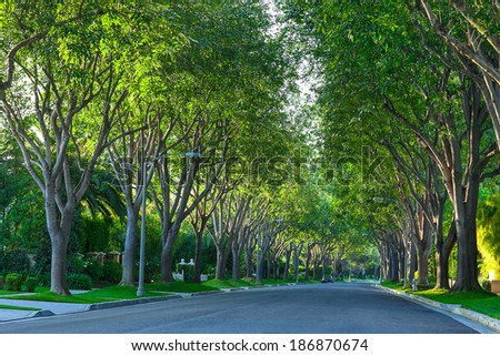 A shot of quiet Beverly Hills Road - stock photo