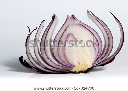 A shot of the slice of red onion. - stock photo