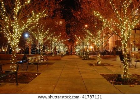 Sidewalk lined trees christmas lights stock photo 41787121 for Sidewalk christmas lights