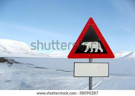 A sign of an ice bear - stock photo