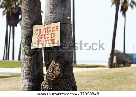 """A sign that reads """"Criterion Species Future"""" hangs on the trunk of a Palm Tree. - stock photo"""
