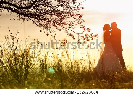 A silhouette of a bride and groom kissing - stock photo