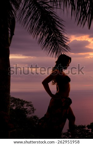 a silhouette of a woman looking to the side in her bikini and sarong, with a palm tree over head. - stock photo