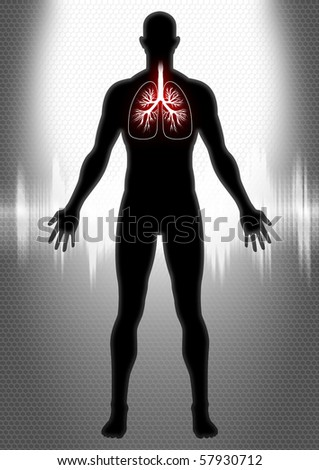 A silhouette of man figure with pulmonary system and heartbeat graphic - stock photo