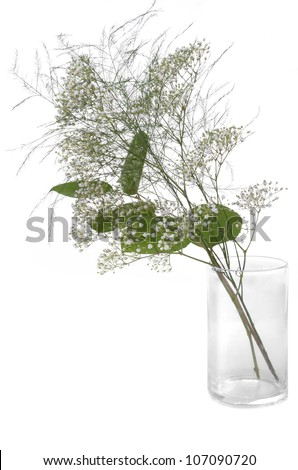 A Simple Arrangement of Baby's Breath Bouquet in a Glass Vase, Isolated on White - stock photo