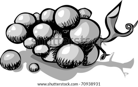 a Simple Black and White ( Grayscale) grape Illustration on white background