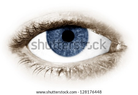 A single blue eye on a white background