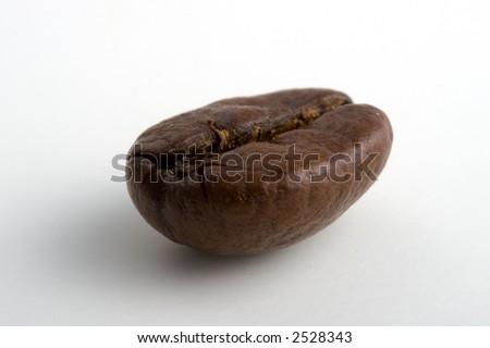 A single coffee bean - stock photo