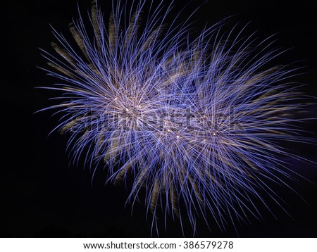 a single effect in a fireworks display