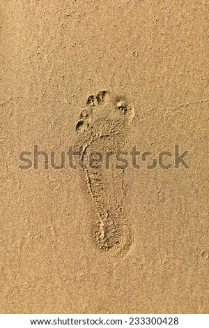 A single footstep print imprinted in the yellow sand on the beach. - stock photo