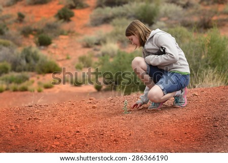 A single green plant in the hot desert sand heat with Girl  - stock photo