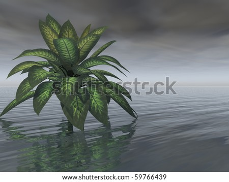 A single healthy-looking tree stands in water beneath a dark, gray, foreboding sky. A storm appears imminent. - stock photo