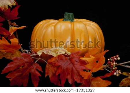 A single lone pumpkin against a black background with leaves along the left side.