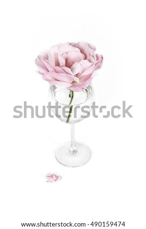A single pink rose in a vase.