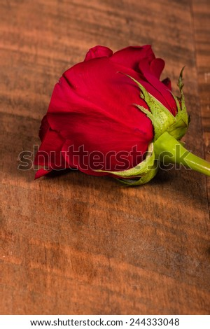 A single red rose on a rough wooden table - stock photo