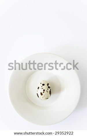 A single speckled quail egg sits on a white dish. - stock photo