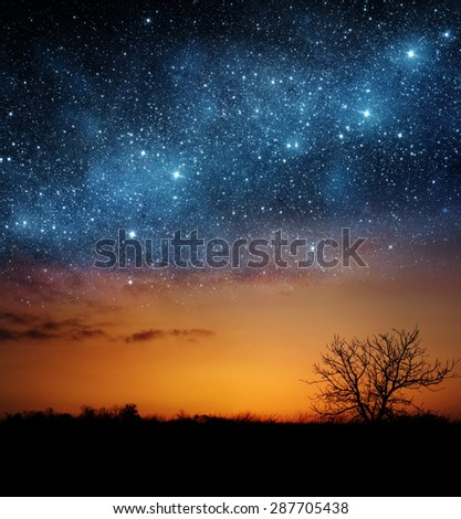 A single tree with beautiful space background. Elements of this image furnished by NASA. - stock photo