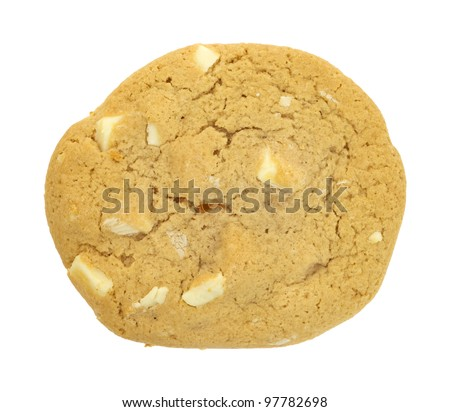 A single white chocolate and macadamia nut cookie.