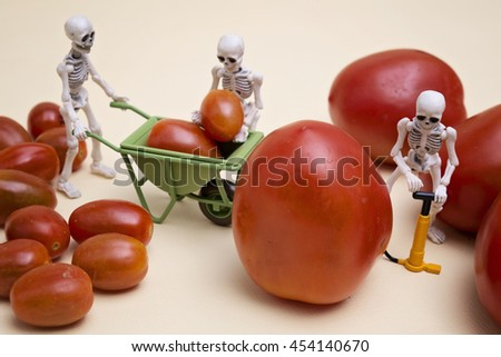 A skeleton pumping small tomato to be a big one - stock photo