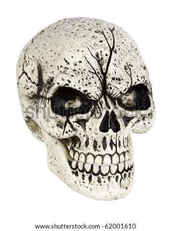 A skull isolated on white with a clipping path - stock photo
