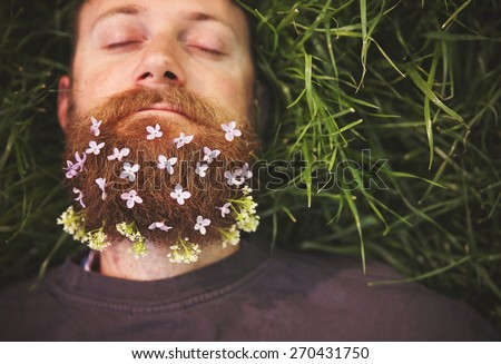 a sleeping hipster lying in tall grass with lilacs in his epic beard taking a nap toned with a retro vintage instagram filter and light leaks  - stock photo
